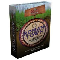 Roman Town: The Premiere Archaeology Game For Kids