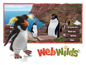 WebWilds Rockhopper Penguin