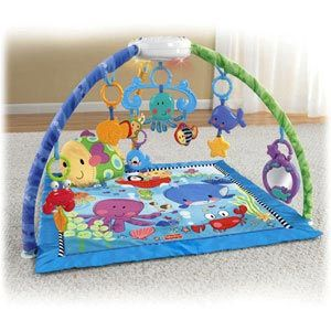Discover n Grow Deluxe Musical Mobile Gym